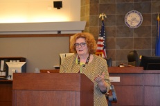 Judge Gloria Sturman presides over the joint bench-bar meeting.